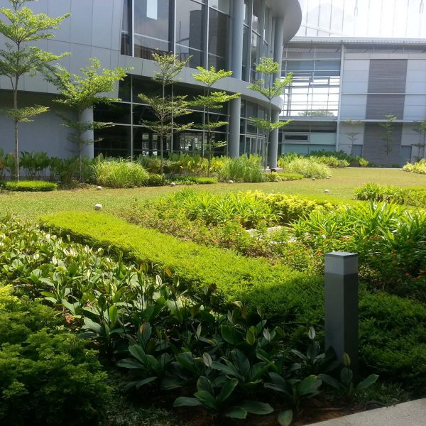 Kims LandScaping Singapore Plantation
